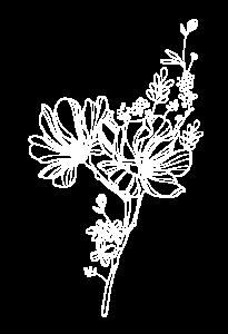 INFINITO Amore fiore