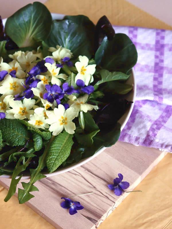 insalata viole primule cicorini erbaviola